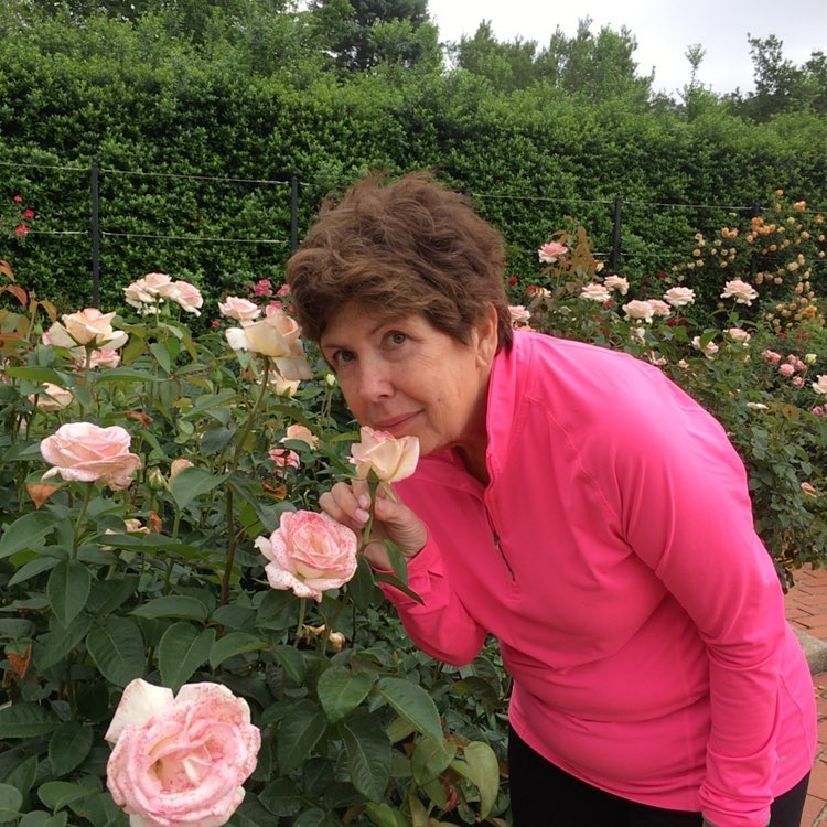 Stopping to smell the roses at the Birmingham Botanical Gardens